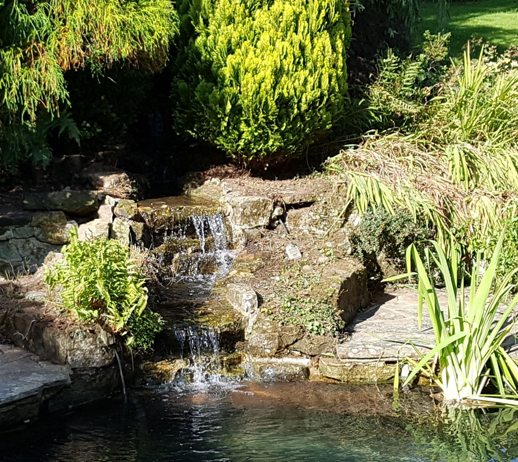 Example of a beautiful garden pond built by The Pond Guys