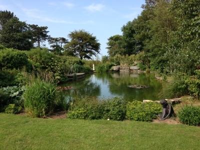 natural-garden-pond