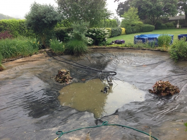 During a pond cleaning project