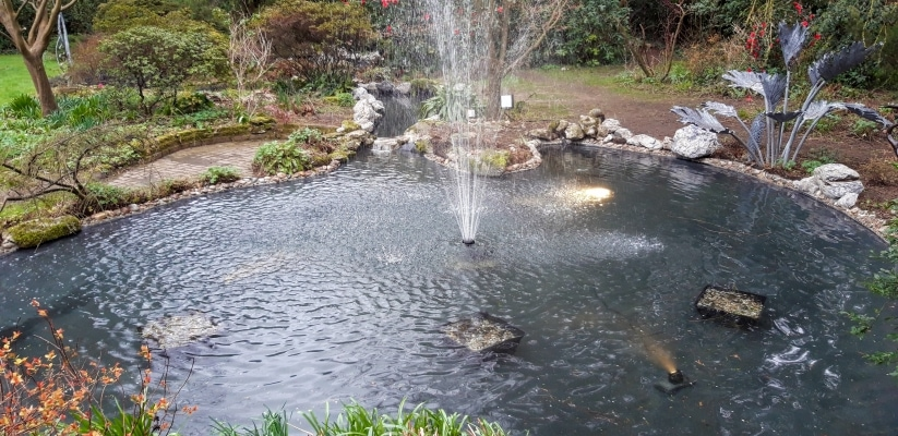 Pond after relining repair